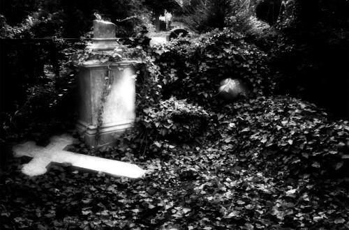 Friedhof_fertig_2_02_11_05